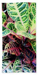 Colorful - Croton - Plant Hand Towel