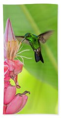 Bath Towel featuring the photograph Copper Rumped Hummingbird Feeds On A Banana Flower by Rachel Lee Young