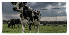 Bath Towel featuring the photograph Cows Landscape. by Anjo Ten Kate