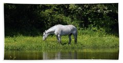 Cumbria. Ulverston. Horse By The Canal Bath Towel