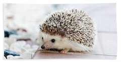 Cute Hedgeog Hand Towel
