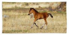 Cute Wild Bay Foal Galloping Across A Field Hand Towel