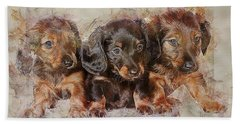 Dachshund Three Puppies Bath Towel