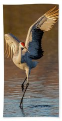 Dance Of The Sandhill Crane Hand Towel