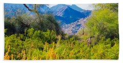 Deep Desert Valley In A Sonoran Desert Spring Hand Towel