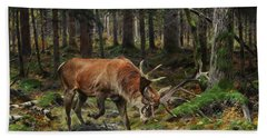 Deer In A Forest Glade, 1912 Bath Towel
