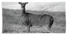 Bath Towel featuring the photograph Deer In Black And White by Angela Murdock
