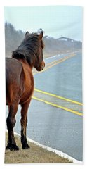 Hand Towel featuring the photograph Delegate's Pride Awaiting Tourists On Assateague Island by Bill Swartwout Fine Art Photography
