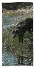 Dog By The River Bank Hand Towel