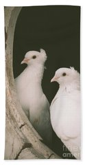 A Pair Of Doves Hand Towel