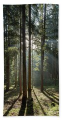 Early Morning In Coniferous Forest Bath Towel