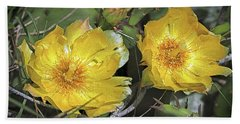 Hand Towel featuring the photograph Eastern Prickley Pear Cactus Flower On Assateague Island by Bill Swartwout Fine Art Photography