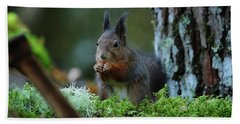 Eating Squirrel Hand Towel