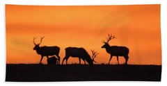 Elk In The Morning Light Hand Towel