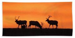 Elk In The Morning Light Bath Towel