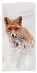 Fairytale Fox Series - The Elusive Dog Fox Hand Towel