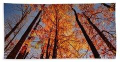 Fall Trees Sky Bath Towel