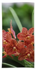 Family Of Orange Spotted Orchids Bath Towel