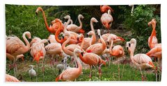 Flamingos Outdoors Hand Towel