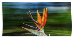 Flying Bird Of Paradise Hand Towel