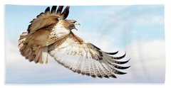 Flying Red-tailed Hawk Hand Towel
