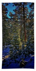 Hand Towel featuring the photograph Forest Shadows by Dan Miller