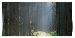 Bath Towel featuring the photograph Forrest And Sun by Anjo Ten Kate