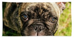 French Bull Dog Bath Towel