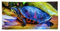 Freshwater Aquatic Turtle Hand Towel