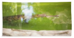 Freshwater Crocodile Hand Towel