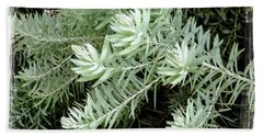 Gentle Leaves Hand Towel