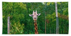 Giraffe Looking For Food During The Daytime. Bath Towel