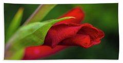 Gladiolus Hand Towel