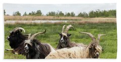 Bath Towel featuring the photograph Goats  by Anjo Ten Kate