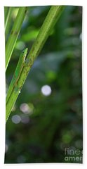 Gold Dust Day Gecko Hand Towel