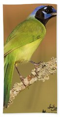 Gorgeous Green Jay Hand Towel