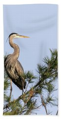 Great Blue Heron 2019-13 Hand Towel