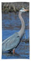 Great Blue Heron Dmsb0150 Bath Towel