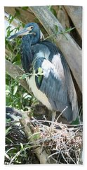 Great Blue Heron On Nest With Baby Bath Towel
