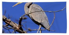 Great Blue Heron Strikes A Pose Bath Towel