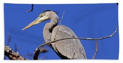 Great Blue Heron Strikes A Pose Hand Towel