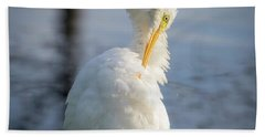 Great Egret - Preening Time Hand Towel