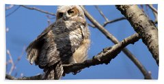 Great Horned Owlet 42915 Hand Towel