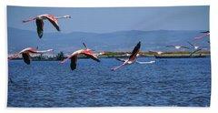 Greater Flamingo Phoenicopterus Roseus F2 Bath Towel