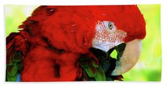 Green-winged Macaw Bath Towel