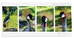 Grey Crowned Crane Gulf Shores Al Collage 1 Bath Towel