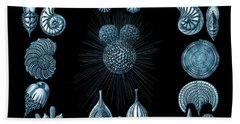Bath Towel featuring the digital art Haeckel Thalamphora by Joy McKenzie