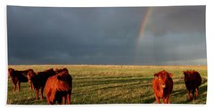 Hand Towel featuring the photograph Heifers And Rainbow by Rob Graham