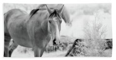 Horse In Infrared Bath Towel