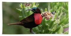 Hunter's Sunbird Hand Towel